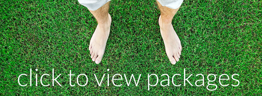 barefoot-bowls-packages